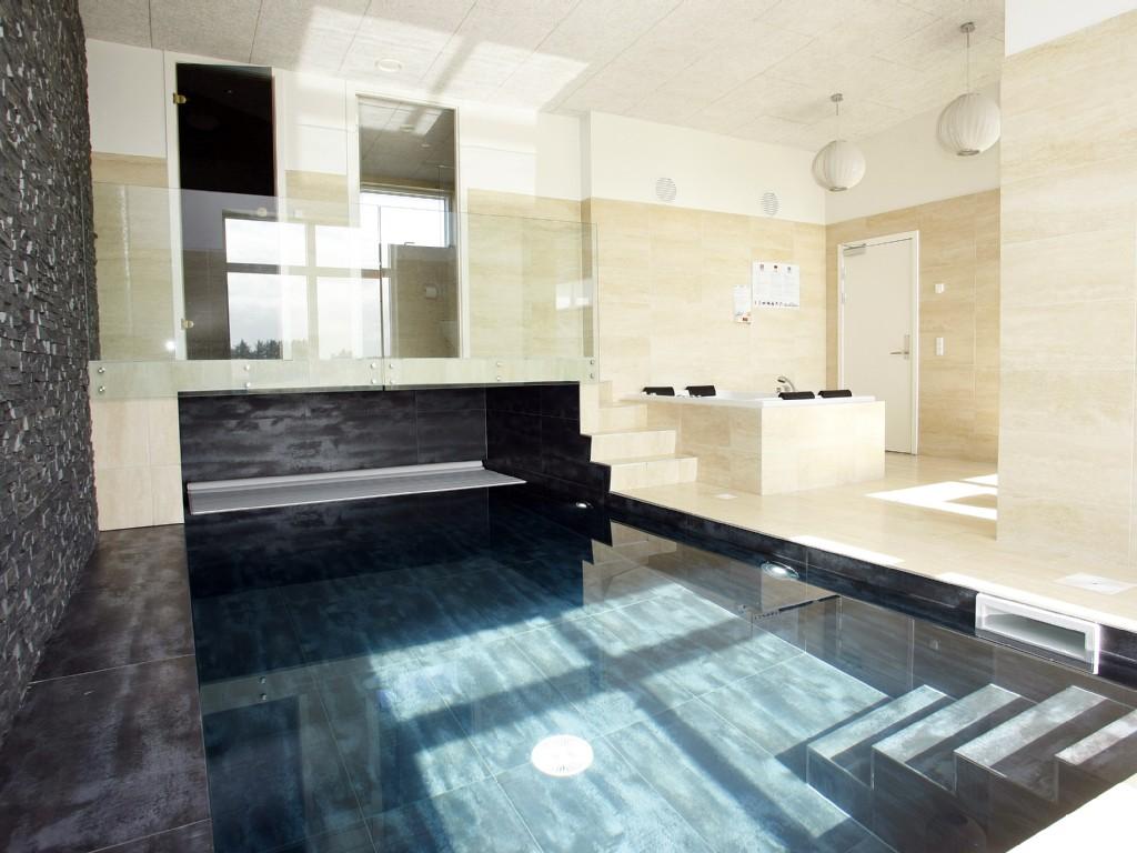 Denemarken   vakantiehuis zwembad sauna 18 personen